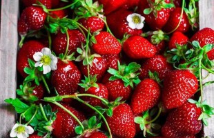 10 Super Health Benefits of Eating Strawberries.