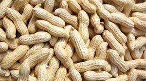 10 Super Health Benefits Of Eating Groundnuts.