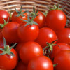 10 Health Benefits From Eating Raw Tomatoes.
