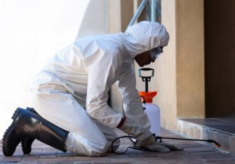Get rid of bedbugs and keep your family safe!