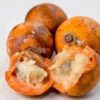 Surprising Health benefits of Agbalumo/Udara Fruit.